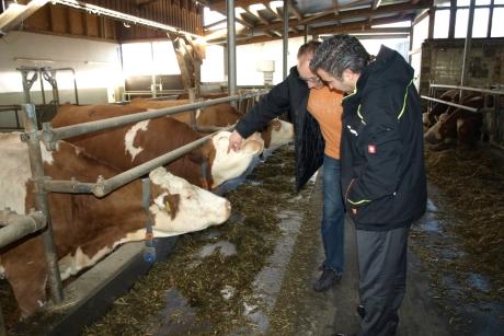 Bauernhof-Betriebsführungen Für Groß Und Klein